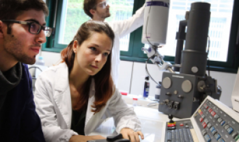 Auxílio prevê passagem e diárias internacionais para docentes integrantes de doutorados -Foto: Unibo