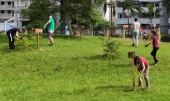 Turma de alunos de Administração Pública faz mutirão na área verde do campus da Udesc em Florianópolis