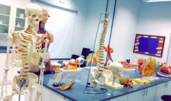 Visitas visam reforçar conhecimentos sobre morfologia do corpo humano