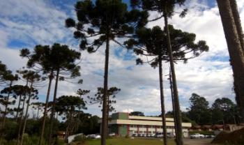 Especializaçãooferecida em São Bento do Sul já foi retomadade forma não presencial - Foto: Aline Volpi