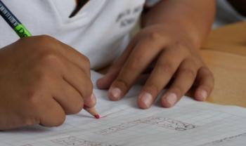 Bolsas irão para alunos das licenciaturas - Foto: Pexels