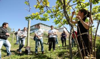 Centro de Ciências Agroveterinárias (CAV), em Lages, oferece vagas em disciplinas na área