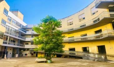 Centro mais antigo da Udesc completa 58 anos em 08 de maio (Foto: Carol Hommerding/Ascom Udesc Faed)